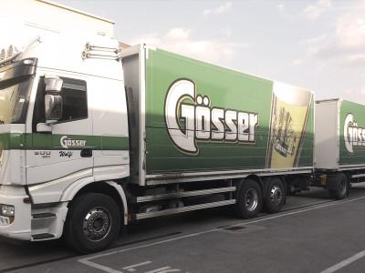 Goesser